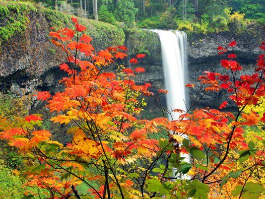 autumn romance hike