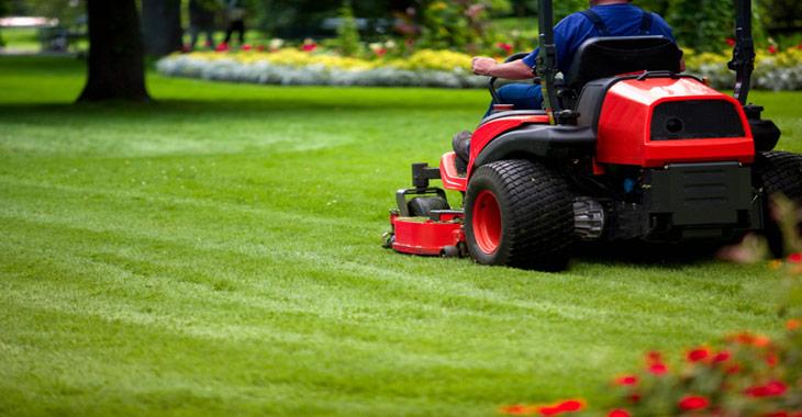 lawn design i love you ideas