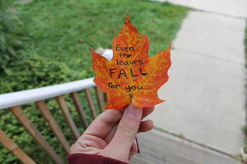 love quote leaf longdistance