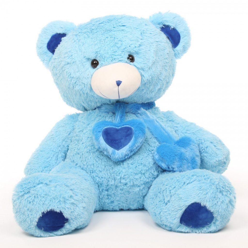 romantic blue teddy bear welcome home idea