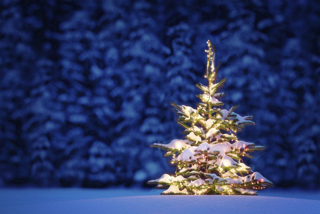 romantic-christmas-snow-ideas