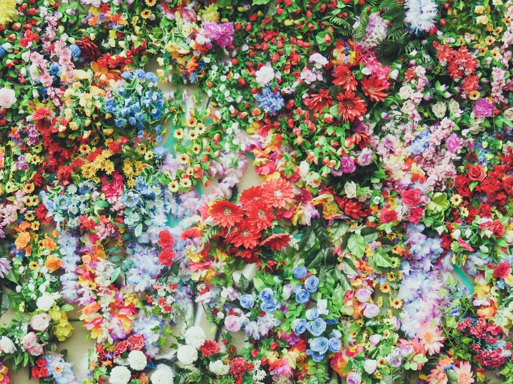 romantic-dating-ideas-flowers