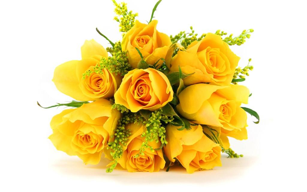 romantic gardening yellow roses