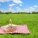 HOW ABOUT A PICNIC – YOUR PLACE OR MINE?