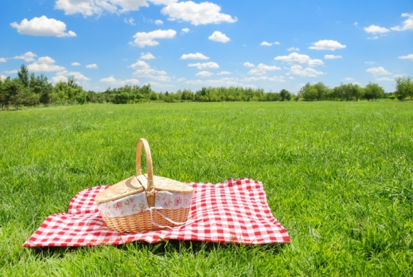 romantic picnic idea turned different