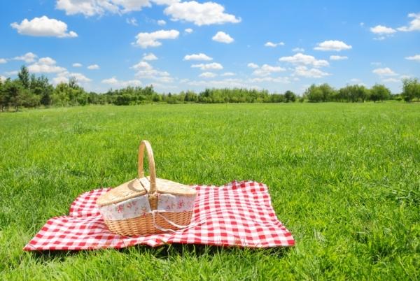 romantic picnic idea turned different