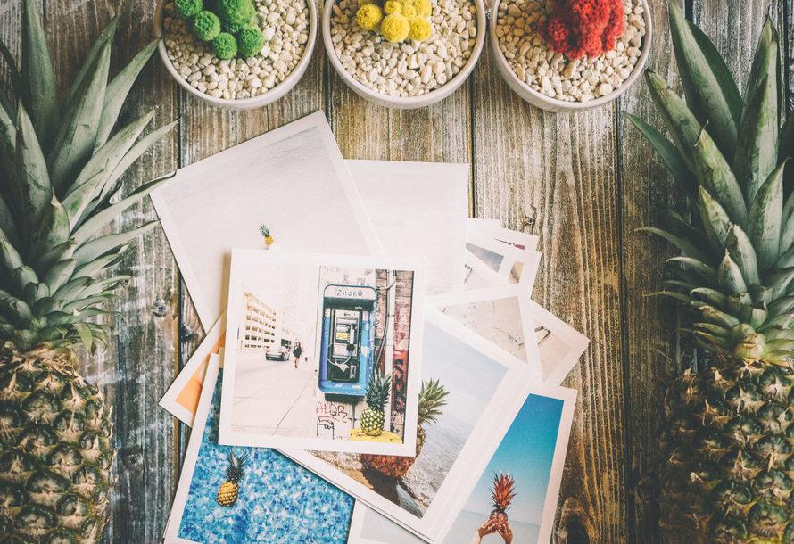 romantic-pineapple-photo-album-wedding-gift-travel