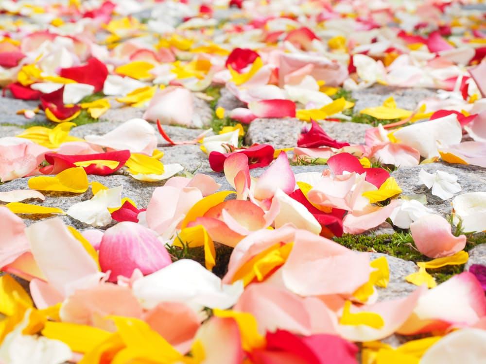 romantic-rose-petals-dating-ideas-flowers