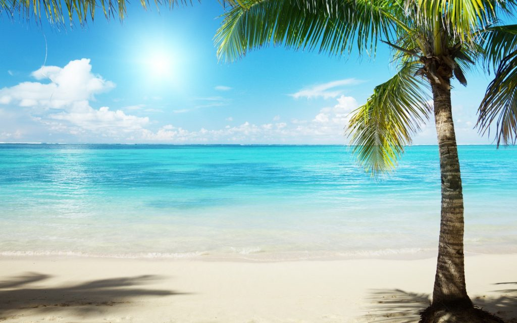 romantic sunny beach at home date ideas