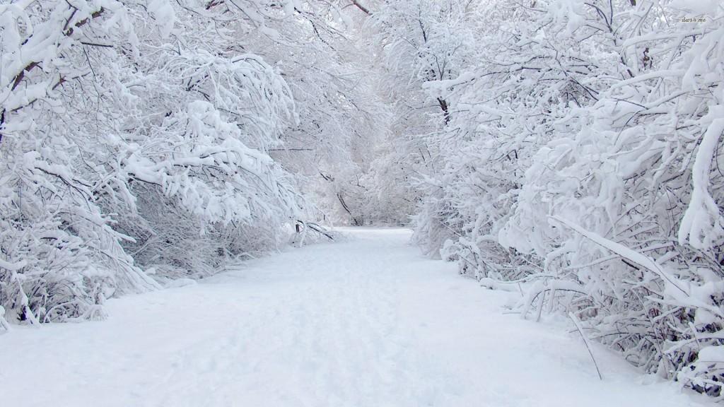 snow anniversary