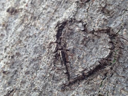 who loves who romantic heart ideas