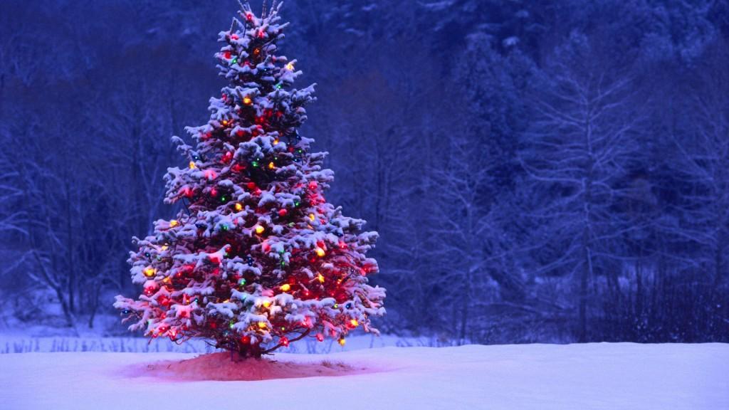 christmas cd love