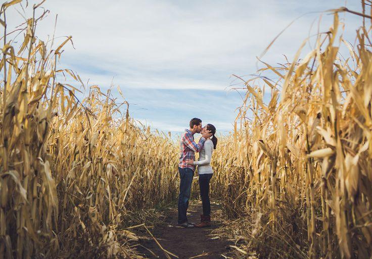 couple in corn maze